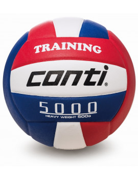 TV5000 Heavy Training Ball