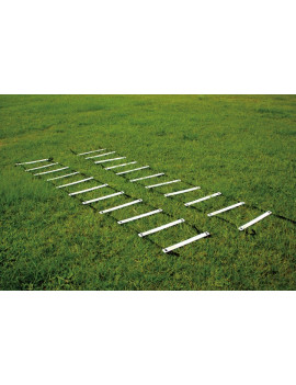 T8629 Training Ladder Set (2pcs)