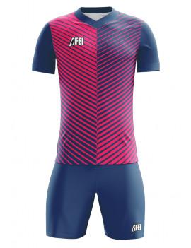 Feye 2017 Kit